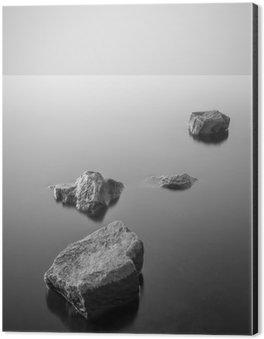Aluminium Print (Dibond) Minimalist misty landscape. Black and white.