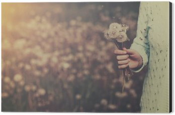 Woman with bunch of dandelion flowers in hand Aluminium Print (Dibond)