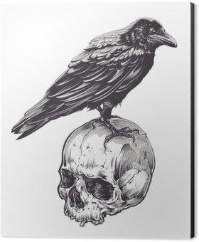 Aluminiumtavla Crow på Skull