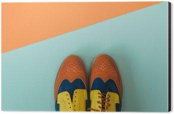 Aluminiumtavla Flat låg mode set: färgade vintage skor på färgad bakgrund. Toppvy.