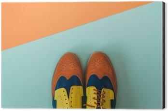 Alüminyum Baskı (Dibond) Düz lay moda seti: renkli zemin üzerine eski ayakkabı renkli. Üstten görünüm.