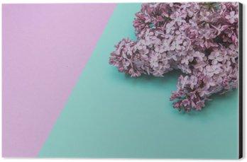 Alüminyum Baskı (Dibond) Düz lay şık set: pastel arka plan üzerinde Leylak çiçekler. Üstten görünüm.