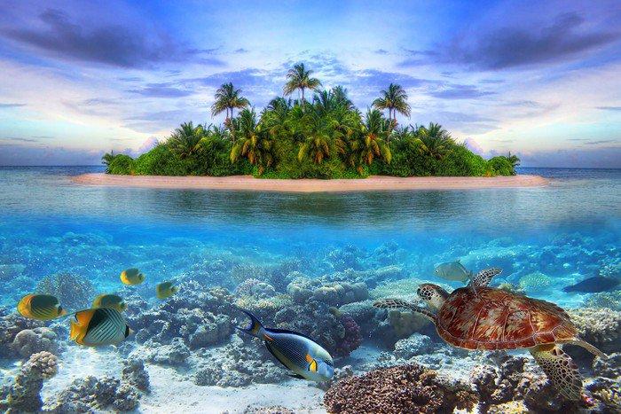 Alüminyum Baskı (Dibond) Maldivler tropikal ada deniz yaşamı -