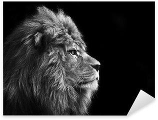 Pixerstick Aufkleber Atemberaubende Gesichts Porträt von männlichen Löwen auf schwarzem Hintergrund in bla