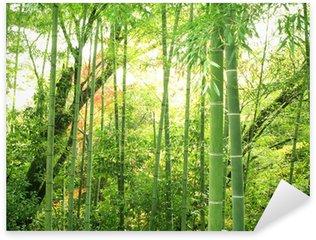 Pixerstick Aufkleber Bambus-Wald