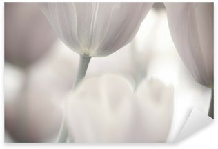 Pixerstick Aufkleber Bildende Kunst der Nahaufnahme Tulpen, verschwommenes und scharf