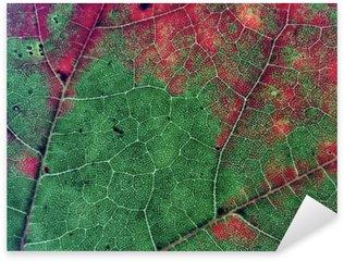 Pixerstick Aufkleber Blätter in der Herbst-Saison Farbe