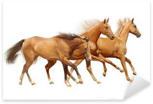 Pixerstick Aufkleber Drei Pferde auf weiß