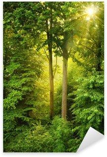 Pixerstick Aufkleber Goldene Sonne leuchtet durch Bäume
