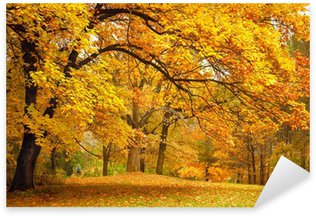 Pixerstick Aufkleber Herbst / Gold Bäume in einem Park