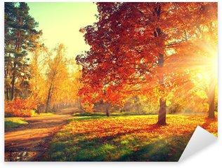 Pixerstick Aufkleber Herbst-Szene. Fallen. Bäume und Blätter in der Sonne Licht