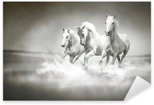 Pixerstick Aufkleber Herde von weißen Pferden, die durch Wasser
