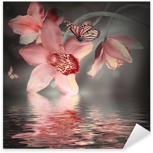 Pixerstick Aufkleber Orchideen mit einem Schmetterling auf dem farbigen Hintergrund