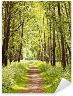 Pixerstick Aufkleber Path in einem sonnigen Sommer Wald