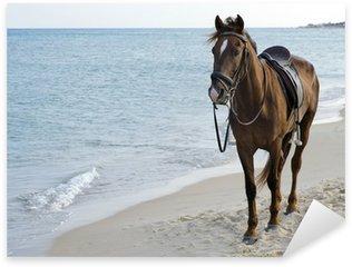 Pixerstick Aufkleber Pferd am Strand