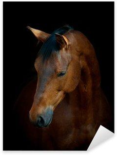 Pixerstick Aufkleber Pferd auf schwarz
