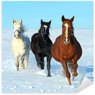 Pixerstick Aufkleber Pferd