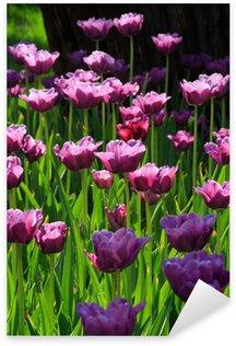 Pixerstick Aufkleber Rosa Diamant Tulpen