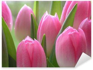 Pixerstick Aufkleber Rosarote Tulpen