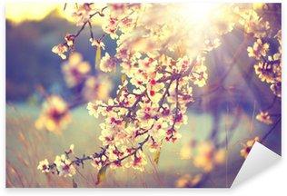 Pixerstick Aufkleber Schöne Natur-Szene mit blühenden Baum und Sonne Flare