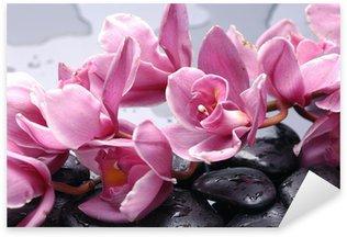 Pixerstick Aufkleber Set von Cattleya Orchidee und Stein mit Wassertropfen