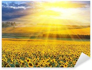 Pixerstick Aufkleber Sonnenuntergang über dem Feld