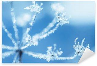 Pixerstick Aufkleber Umbelliferae Anlage in Frost