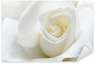 Pixerstick Aufkleber Weiche weiße Rose