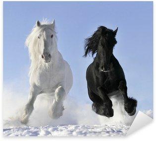 Pixerstick Aufkleber Weißen und schwarzen Pferd