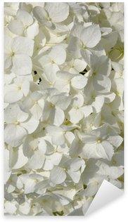 Pixerstick Aufkleber Weißer Hydrangea im Garten