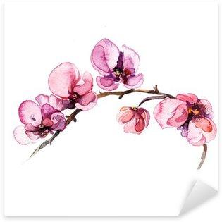 Autocolante Pixerstick A aguarela floresce a orquídea isolada no fundo branco