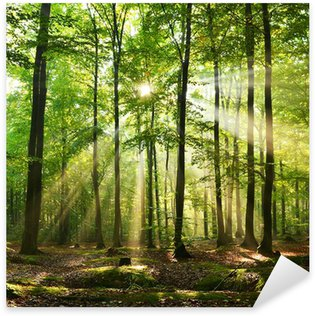 Autocolante Pixerstick Forest