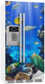 Autocolante para Frigorífico Coral colony and coral fish