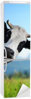Autocolante para Frigorífico Cow