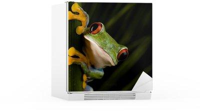 Autocolante para Frigorífico Crazy frog