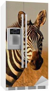 Autocolante para Frigorífico head and neck of zebra looking at camera