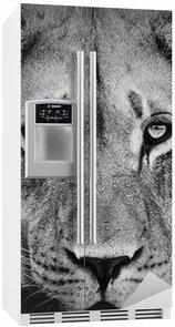 Autocolante para Frigorífico Lion Portrait