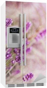 Autocolante para Frigorífico White butterfly on lavender
