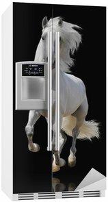 Autocolante para Frigorífico white horse isolated