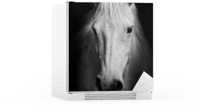 Autocolante para Frigorífico White horse's black and white; art portrait