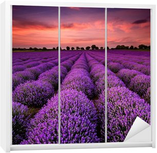 Autocolante para Roupeiro Stunning landscape with lavender field at sunset