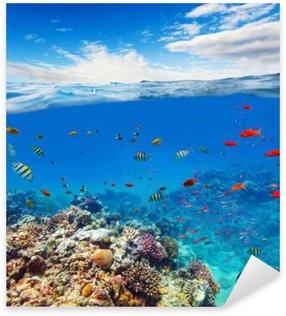 Autocolante Pixerstick Recife de coral debaixo d'água com ondas horizonte e água
