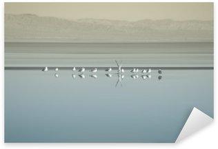 Autocolante Pixerstick Vogelschwarm sou Saltonsee / Die Brutkolonie von Vogelschwärmen sou Saltonsee em Kalifornien.