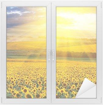 Cam ve Pencere Çıkartması Alanın üzerine Sunset
