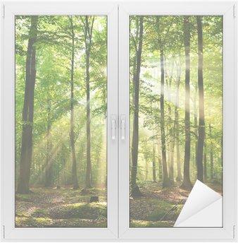 Cam ve Pencere Çıkartması Orman