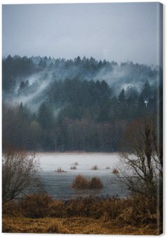 Canvas Autumn Mist / Mists van Vancouver Island