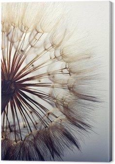 Canvas big dandelion on a blue background