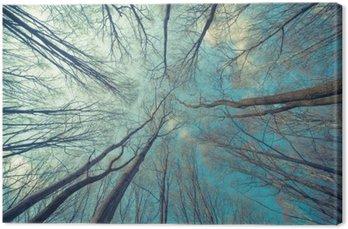 Canvas Bomen Achtergrond van het Web