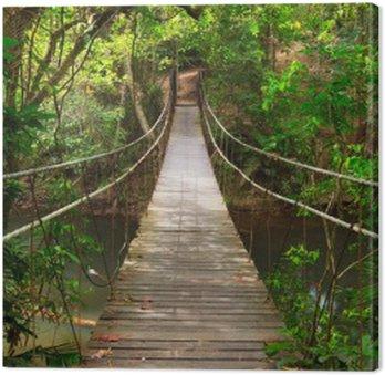 Canvas Brug naar de jungle, Khao Yai National Park, Thailand