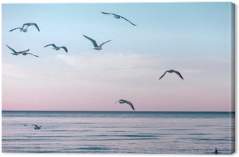 Canvas Grote groep zwerm meeuwen op zee meer water en vliegen in de lucht op de zomer zonsondergang, afgezwakt met Instagram retro hipster filters, film effect